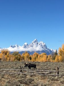 A LiveBest Guide to Jackson Hole, Wyoming. | Only for those who like to eat and explore! www.LiveBest.info