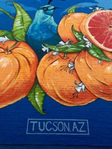 Things to do in Tucson | These are some of my favorite things to do and eat! www.LiveBest.info