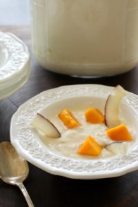 Homemade Yogurt in a bowl with mango and coconut