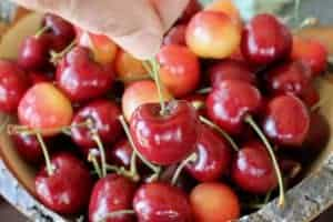 Best way to eat cherries? One at a time! Or in a Cherry Herb Cheese Salad. www.LiveBest.info